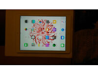 Apple iPad Air 1st Gen 16GB WiFi with Flappy Bird