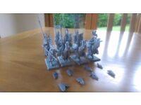 Warhammer high elf silver helm cavalry regiment