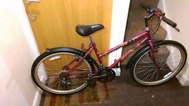 Raleigh ladies mountain bike with 26 wheel size