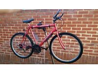 """Concept Spectra 26"""" Wheels Bike Fully Working"""
