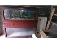 Double Aquarium in Wood Surround