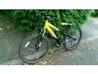 "Raleigh hotrod 6 speed kids mountain bike in good condition 20"" wheel (7-10 years)"