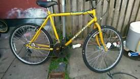 Mountain bikes cheap