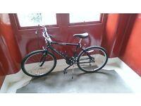Men's / youth's Raleigh mountain bike