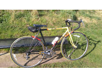 Raliegh Banana cycle well looked after and fully serviced