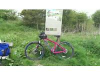 Whyte bike 802 size small 2016