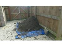 Soil ideal for garden bed mixed with gravel