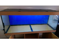 Juwel 400 litre tank & cabinet