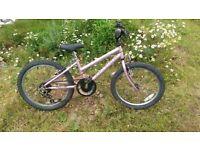 RALEIGH GIRLS 20inch Bike