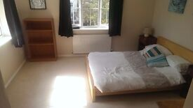Lovely double ensuite, 10mins from taunton