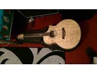 Ibanez EW20 Electro Acoustic Guitar