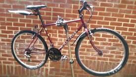 "Raleigh Mountain Bike 26"" Wheels"