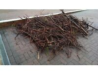 FREE - Wood - firewood / bonfire / kindling - FREE