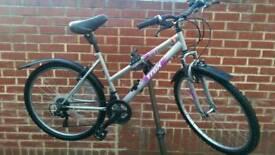 "Lady's Bike Trax 26"" Wheels With Mudguards"
