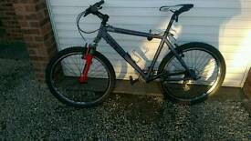 Viking Mountain bike