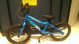Blue Ridgeback NX13 Kids bike