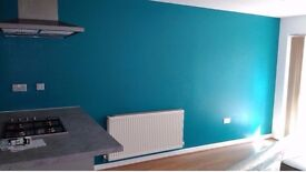 Canada Water Painter - all of South East London Painter