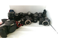 Job lot of 14 Faulty Digital Cameras - SLR and Compact