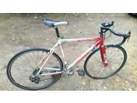 Road Bike ( Triax )