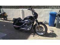 2007 Harley sportster 1200 low..