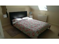 Double bed & 3 seater sofa/sofa bed available immediately