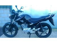Yamaha YBR125 Low Mileage Yamaha Serviced TAXED until 01/04/2017
