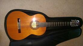 Suzuka Guitar