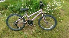 Raleigh girls bike 20 inch