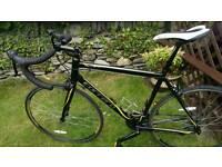 Carrera road bike