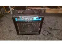 Ashton Bass Amp