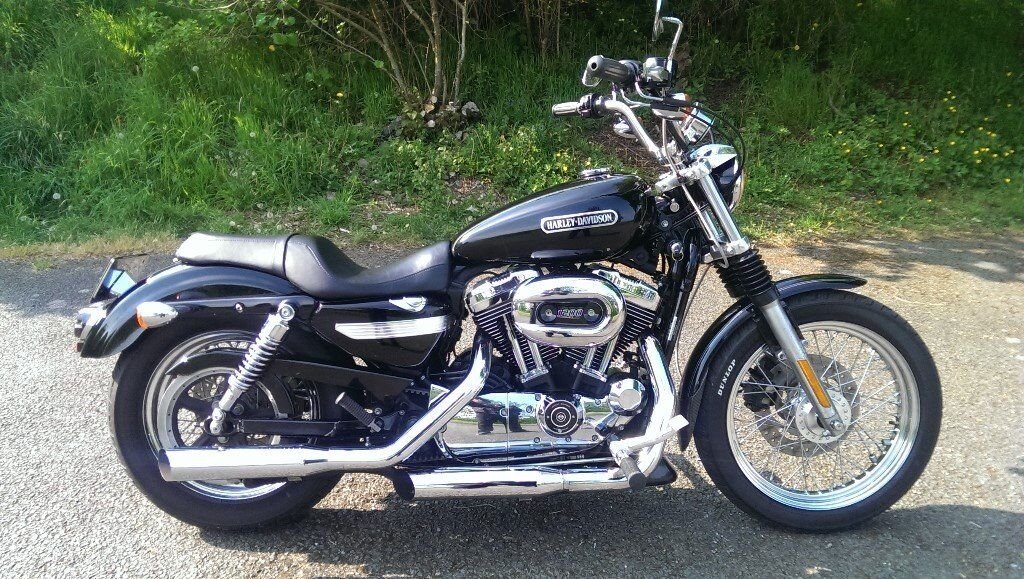 harley sportster 1200 low in newtownards county down. Black Bedroom Furniture Sets. Home Design Ideas