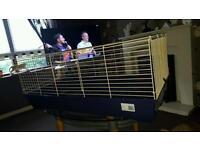 Large indoor Guinea pig rabbit cage