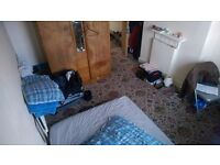Girl housemate needed for great big single room
