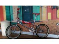 Old School BMX - Hutch Pro Racing XXL Retro Custom Build