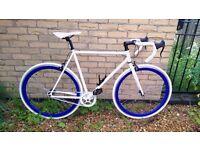 Single speed / Fixie / Fixed gear bike Drop Bars Large