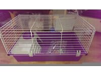 Small indoor Guinea Pig Cage