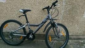 "Ladies Town bike SMALL 13 "" (lightweight aluminium frame)"