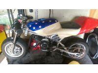 mini moto and mini dirt bike