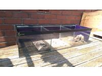 4 Foot Breeding Fish Aquarium Clear-Seal tank
