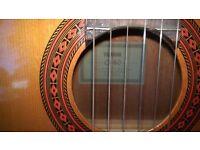 Acoustic Guitar - Yamaha C-40