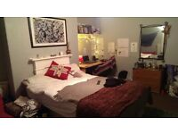 Lovely spacious double bed room going in shared house in hyde park