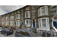 Crystal Palace SE19. Large & Modern 1 Bed Furnished Flat in Period Conversion with High Ceiling