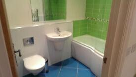 Tradesman ,Handyman ,Plasterer, Carpenter. tiling, bathroom fitting