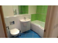 Tradesman ,Handyman ,Plasterer, Carpenter. tiling, bathroom fitting