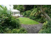 Power washing & Garden services