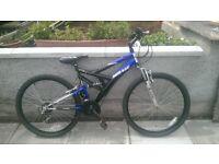 Eurotrek Mirage Boy Bike