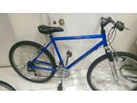 Raleigh mountain bike needs tlc