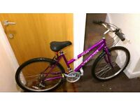 Ladies bike with 26 wheel size