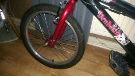 APOLLO VENDETTA BMX BIKE