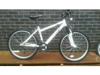 Ladies Town bike MTB (NEW)